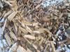 Продаю дрова дубовые