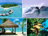 Райские Мальдивы по лучшим ценам